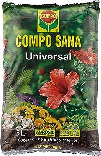Amazon.es: arena plantas: Jardín