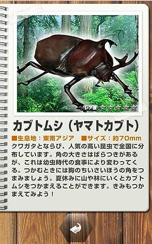 『世界の昆虫採集』の8枚目の画像