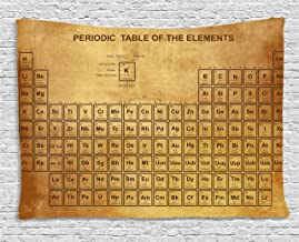 Ambesonne Science Tapestry, Elements Chemistry Table Vintage Old Design for Scientists Student Print, Wide Wall Hanging for Bedroom Living Room Dorm, 80