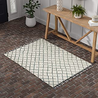 Stone & Beam Tassled Criss-Cross Wool Area Rug, 4 x 6 Foot, Blue and White