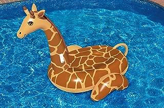 Best swimline giant inflatable giraffe Reviews