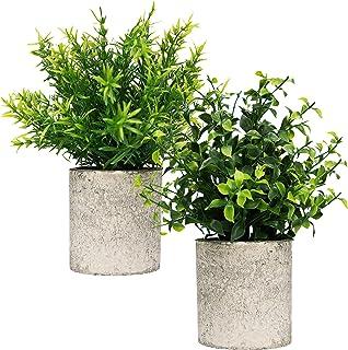 Small Artificial Plants in Pots For Home Decor Fake Faux Feaux Face Decorative Plant Decoration Arrangements Mini Artifici...