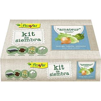 Huerto Urbano - Seed Box Mini Culinarias - Batlle: Amazon.es: Jardín
