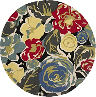 Safavieh Four Seasons Collection FRS437A Hand-Hooked Black and Multi Indoor/ Outdoor Round Area Rug (5' Diameter)