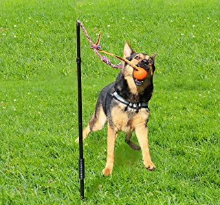 Highland Farms Select Dog Retractable Interactive Training Tug Toy - Pet Obedience Training Tug - Stable Exercise Metal Pole & Spring Rod with Replaceable Chew Rope for Small/Medium/Large Dogs