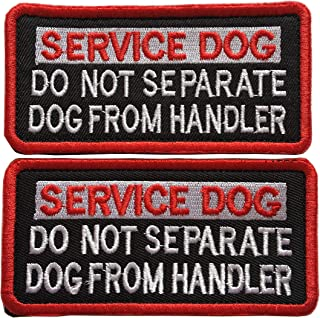 do not separate service dog from handler