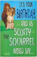 American Greetings Funny Birthday Card (Squirrel)