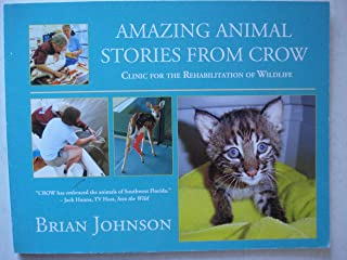 Amazing Animal Stories From Crow : Clinic for the Rehabilitation of Wildlife