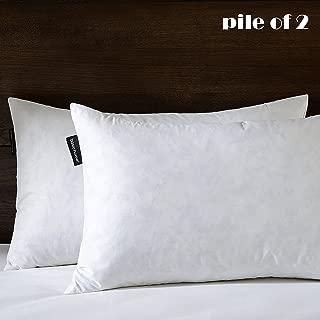 Best 12x20 down pillow insert Reviews