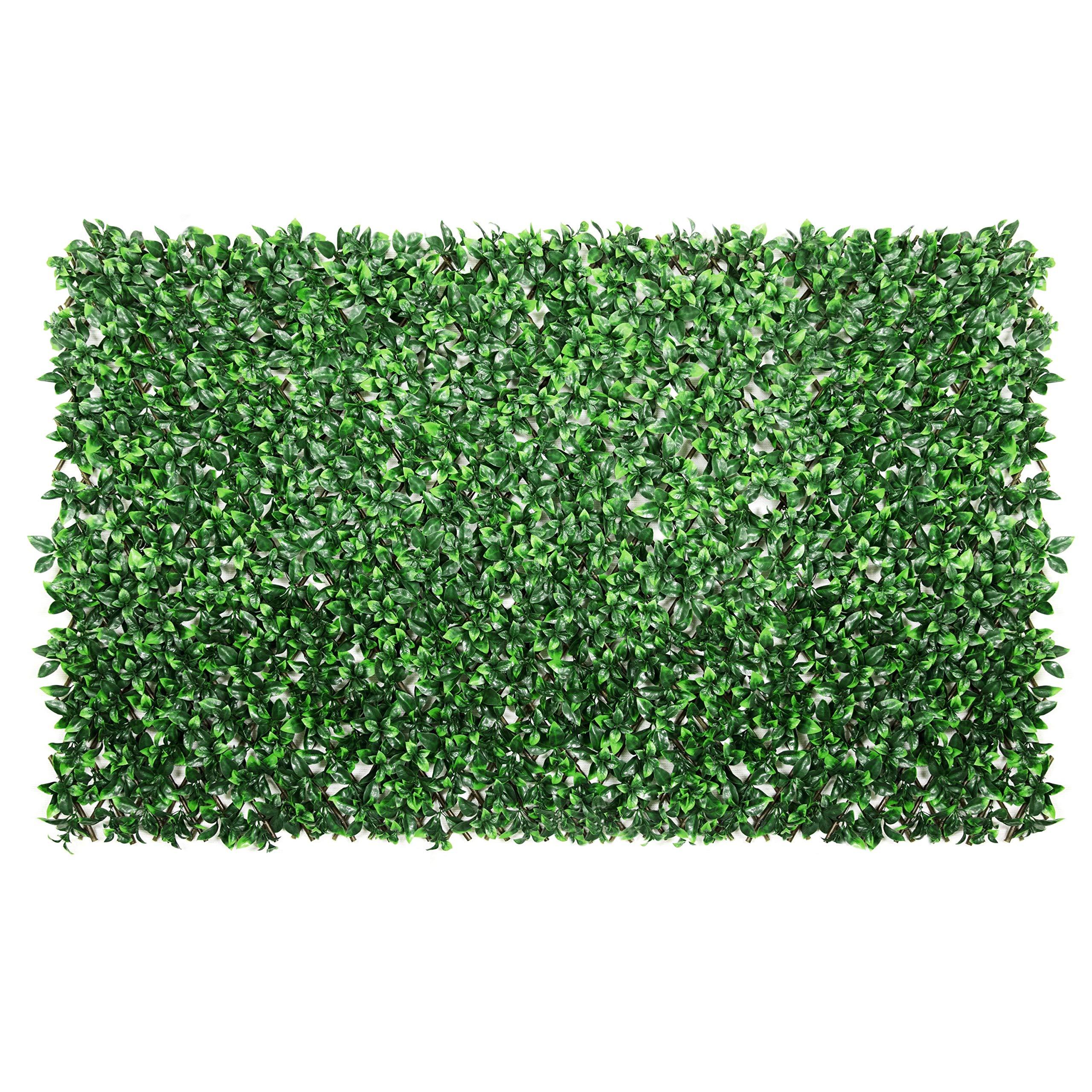 ColourTree Gardenia Expandable Retractable Hedge Leaf Faux ...