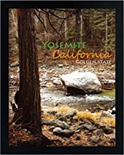 Golden State Art, 11x14 Inch Poster Frame - Black - Landscape/Portrait - Swivel Tabs - Simple and Stylish