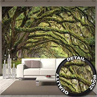GREAT ART Foto Mural Bosque de Robles Póster de Naturaleza Tapíz Paisaje en Verano Forest Imagen Musgo (336x238 cm)