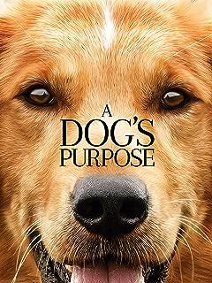 puppy love full movie online free