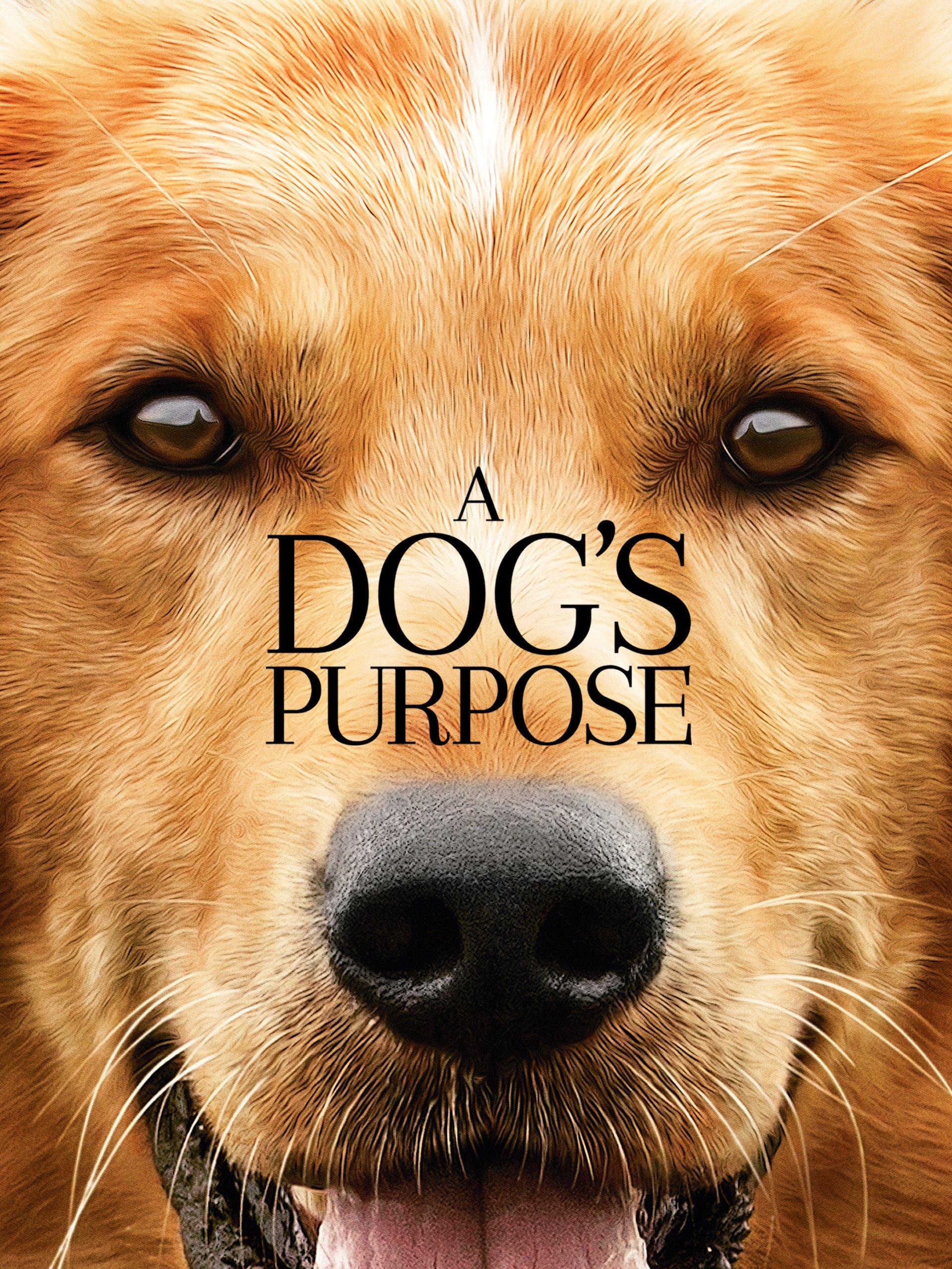 Dogs Purpose Britt Robertson