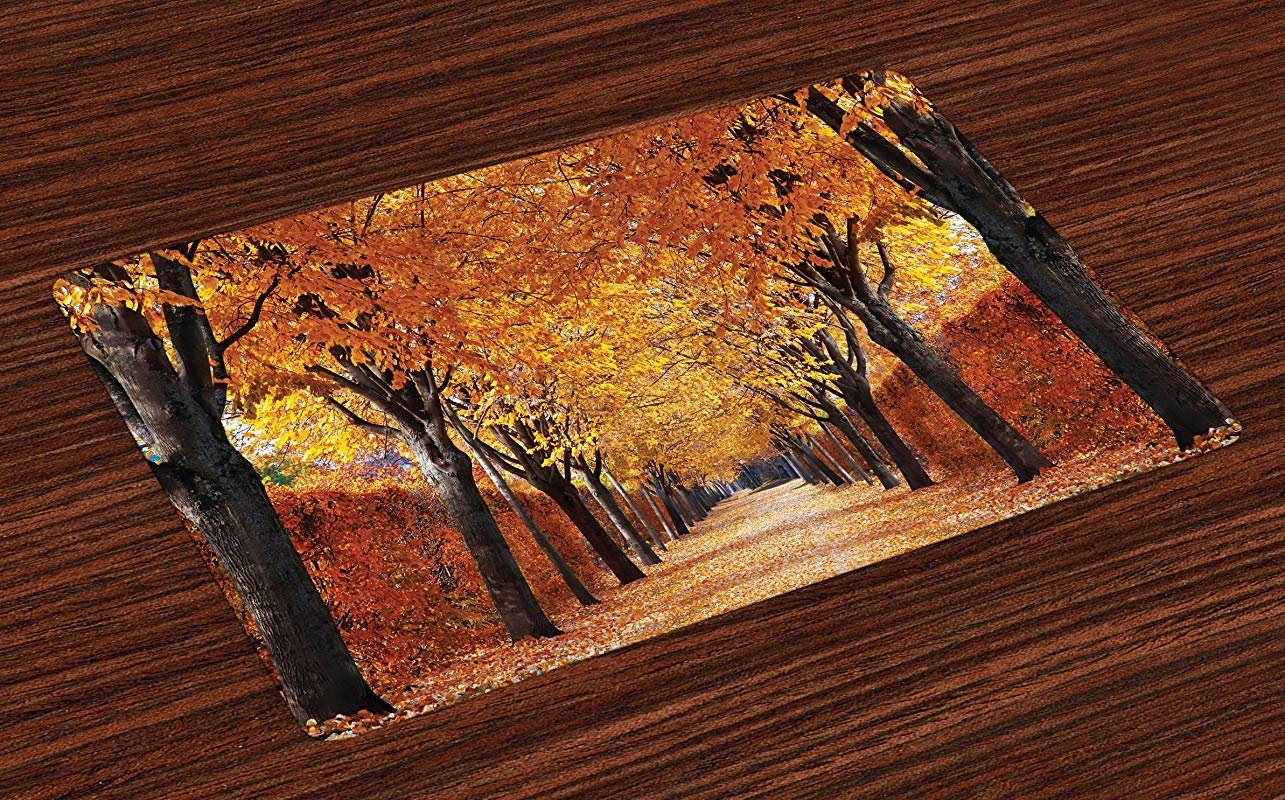 Ambesonne Autumn Place Mats Set Of 4 Pathway In The Woods Covered With Dried Deciduous Tree Leaves Romantic Fall Season Washable Fabric Placemats For Dining Table Standard Size Orange Brown