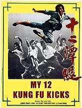 My 12 Kung Fu Kicks