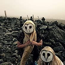 Barn Owl Masquerade Mask - Bird Mask for Halloween Costume - Handmade Custom Props