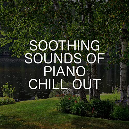 Landscape Views de Relaxing Chill Out Music en Amazon Music - Amazon.es