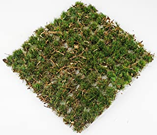 wws Ancient Oakland 10mm Self Adhesive Static Grass Tufts x 100 – Railway Modeling, Models, Wargames