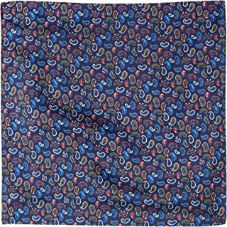 Van Heusen Men's Pocket Square Blue Paisley, Blue, One Size