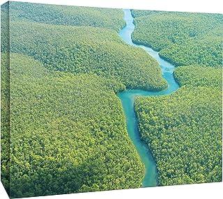 JP لندن mcnv2348Wild winding Amazon River رينفوريست 5.1cm سمك ثقيل الوزن Gallery Wrap Canvas ، 3'X 2'