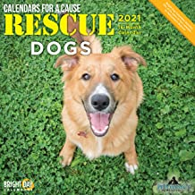 2021 Rescue Dogs Wall Calendar by Bright Day, 12 x 12 Inch, Cute Puppies Calendars for a Cause