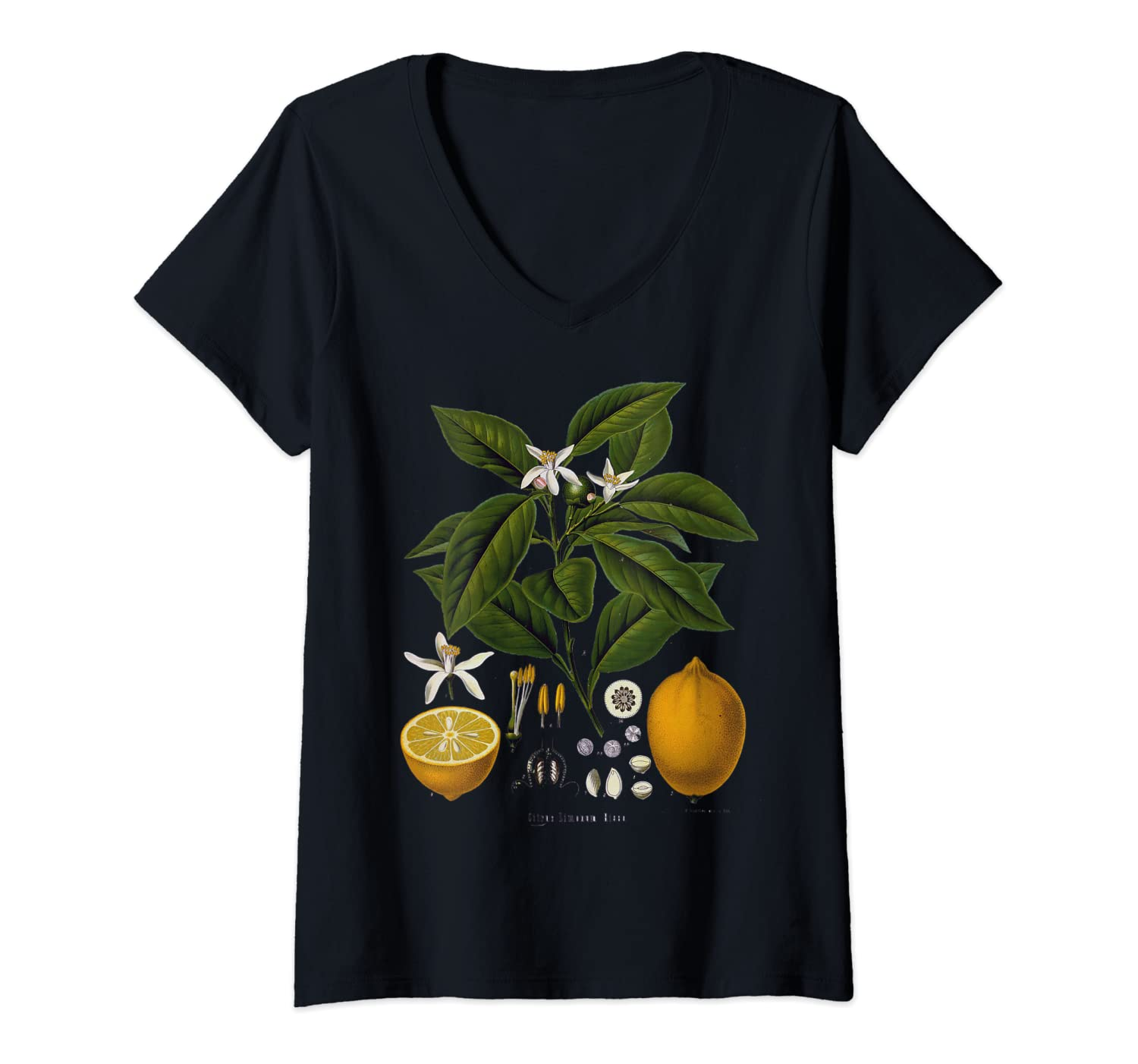 Womens Lemon Plant botanical Fruit Tree For Gardeners gift V-Neck T-Shirt