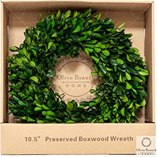 Olive Branch Home Preserved Boxwood Wreath With Straw Back, Small Indoor Year Round Green Wreath (10.5 Inch Round)