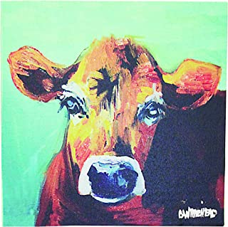 real cow pictures