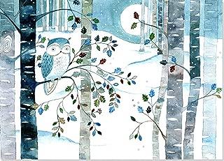 winter solstice owl