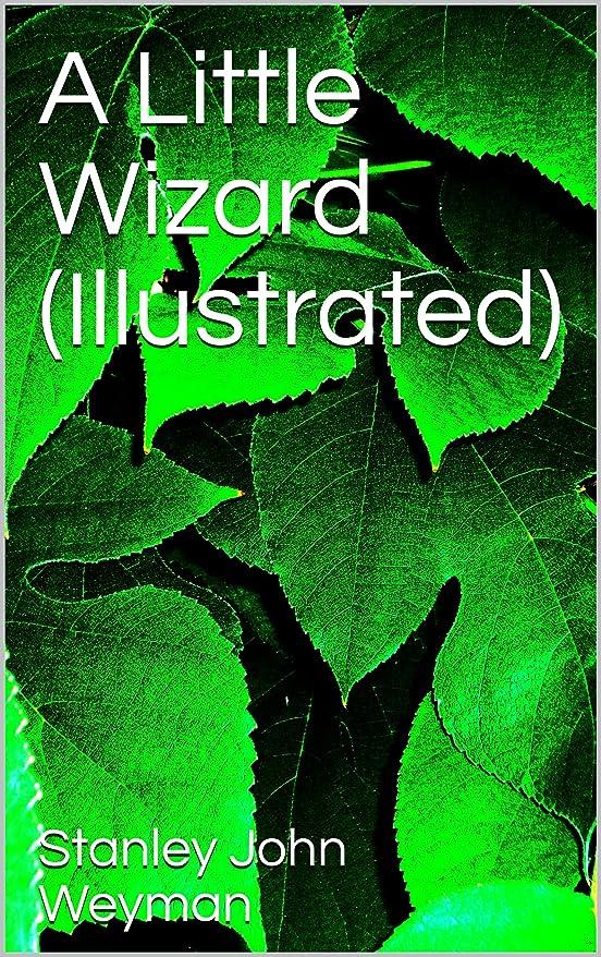 懲戒無秩序隣接A Little Wizard (Illustrated) (English Edition)