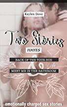TWO SEX STORIES: Back of the tour bus & Meet me in the Bathroom (HAYES)