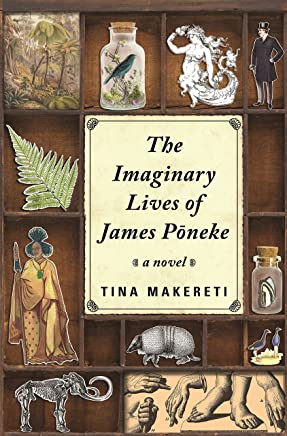 Imaginary Lives of James Poneke, The