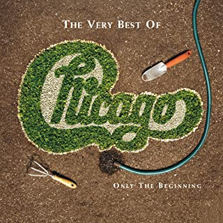 Best chicago band hits Reviews