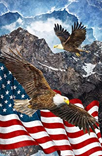 Patriotic 28-inch Panel, Digital Print, Soaring Eagles, US Flag, Stonehenge, Stars and Stripes VII, Quilts of Valor, Northcott, DP39435-49