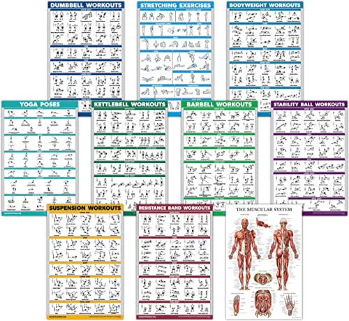 QuickFit 10 Pack - Exercise Workout Poster Set - Dumbbell, Suspension, Kettlebell, Resistance Bands, Stretching, Body...