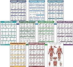 Quickfit 10 Pack - oefening workout poster set - halter, ophanging, kettlebell, weerstandsbanden, stretching, lichaamsgewi...