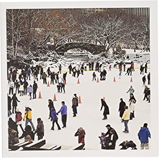 3dRose Snow blizzard in Central Park Manhattan New York City Ice Skate Ring - Greeting Cards, 6 x 6 inches, set of 6 (gc_10308_1)