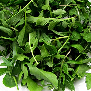 Arugula Seeds ? Organic Non-GMO Heirloom Arugula (Roquette or Rocket) Seeds (100+ Seeds)