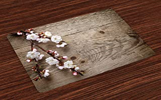 Lunarable Rustic Place Mats Set of 4, Romantic Springtime Cherry Blossom Branch Over an Old Table Love Valentine's Day, Washable Fabric Placemats for Dining Table, Standard Size, Brown White