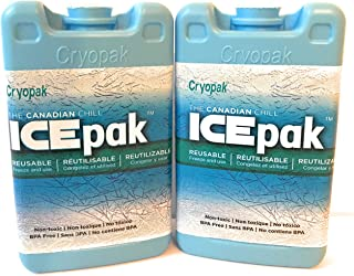Cryopak Hard Shell Ice Packs - Set of 2 - Perfect Ice Packs for School Lunch Boxes and Coolers - Great Value!