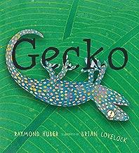 Best raymond huber books Reviews