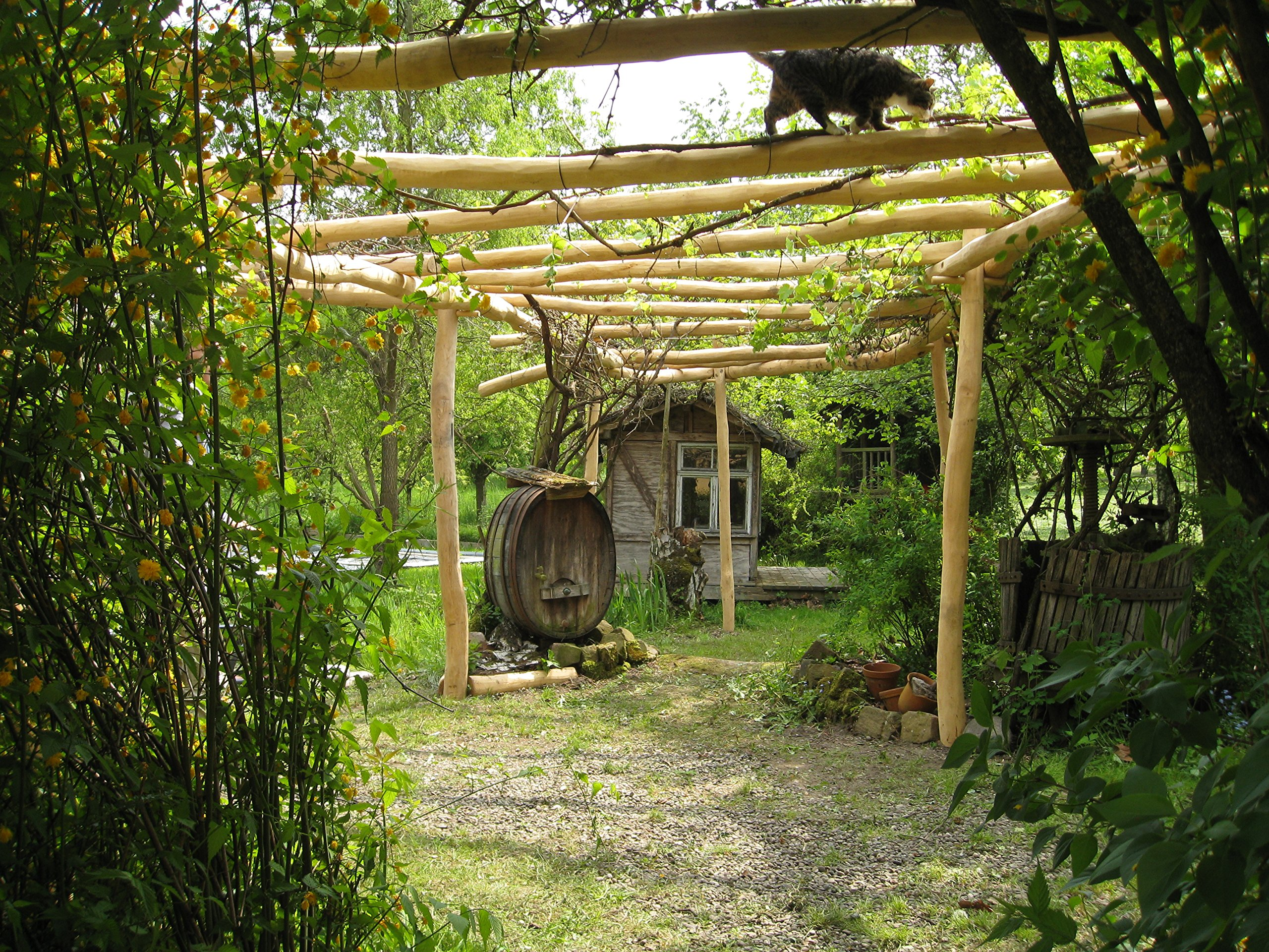 B + T rob080100 de acacia A4 tronco/Ø 80 – 100 mm/L: 4,00 m: Amazon.es: Jardín