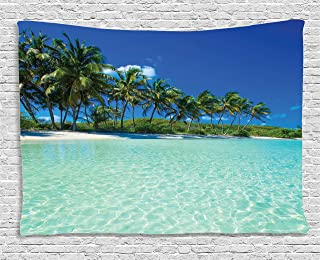 Ambesonne Ocean Decor Collection, Image of a Sunny Day in a Tropical Island with Palm Trees and Ocean Heaven Calm Lands, Bedroom Living Room Dorm Wall Hanging Tapestry, 80W X 60L Inch, Multi