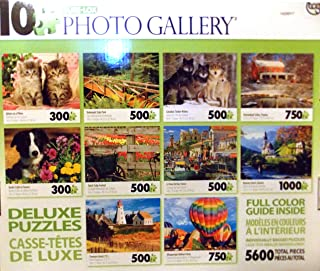 Sure-Lox Collection of 10 Deluxe Puzzles Of an Amazing Photo Art Gallery - 5600 Jigsaw Puzzle Pieces By Various Artists (GREEN BOX)