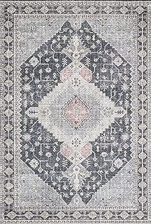 Loloi ll SKY-02 Skye Collection Printed Distressed Vintage Area Rug, 2'-3