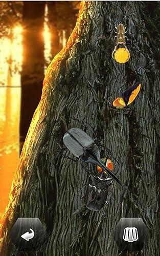 『世界の昆虫採集』の3枚目の画像