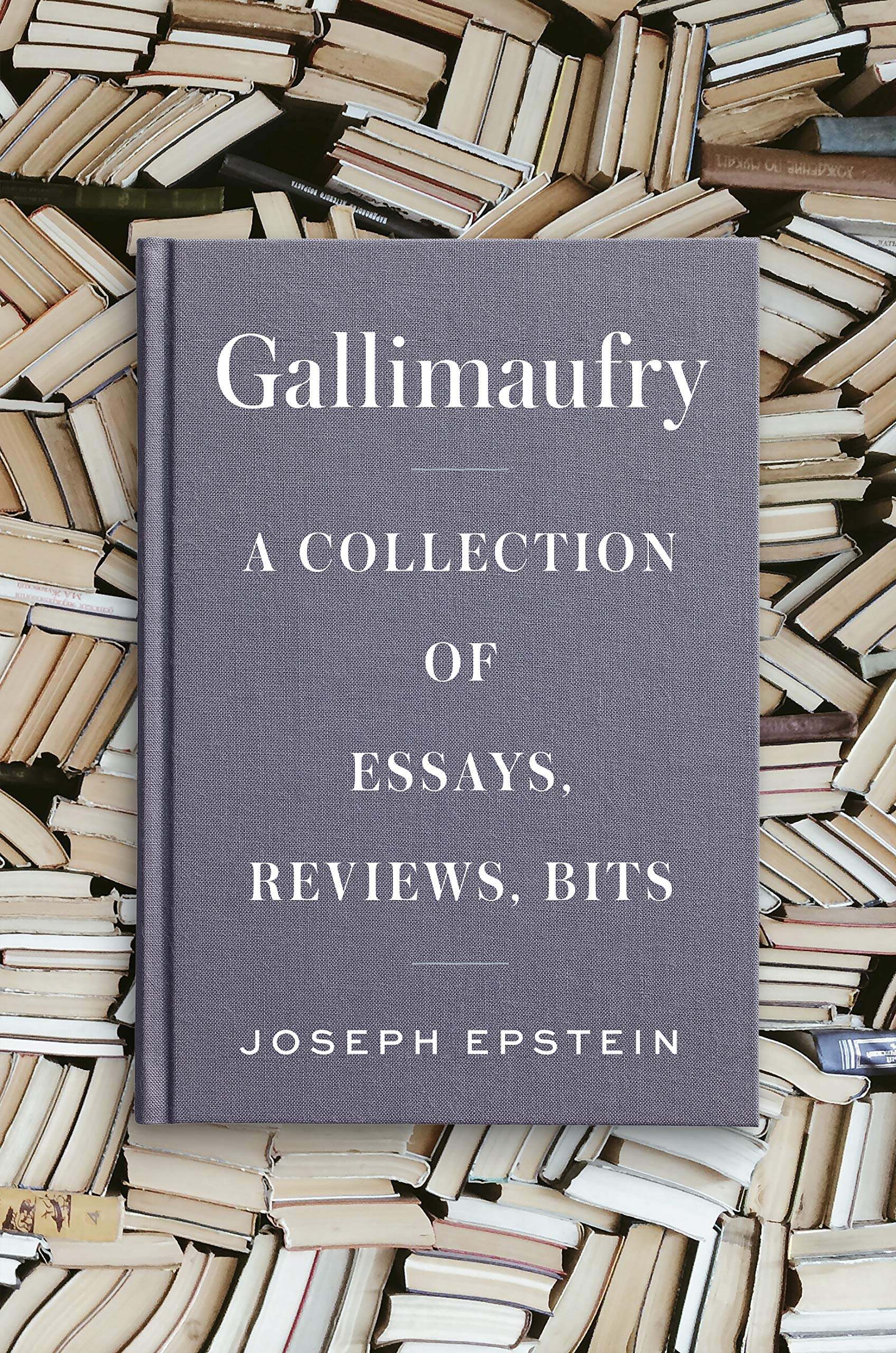 Gallimaufry: A Collection of Essays, Reviews, Bits