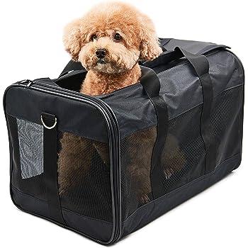 ペット 旅行 人気