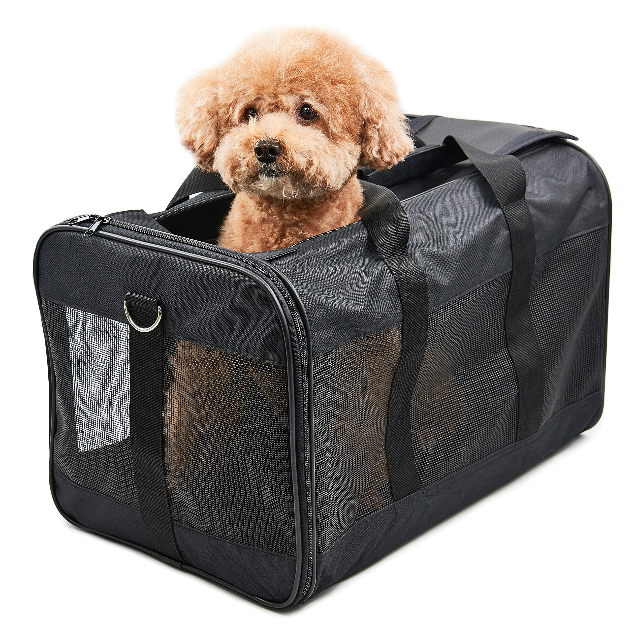 Amazon.com : ScratchMe Pet Travel Carrier Soft Sided Portable Bag for Cats and Small Dogs, Collapsible, Durable, Airline Approved, Travel Friendly, Carry Your Pet with Safely and Comfortably, Black : Pet Supplies
